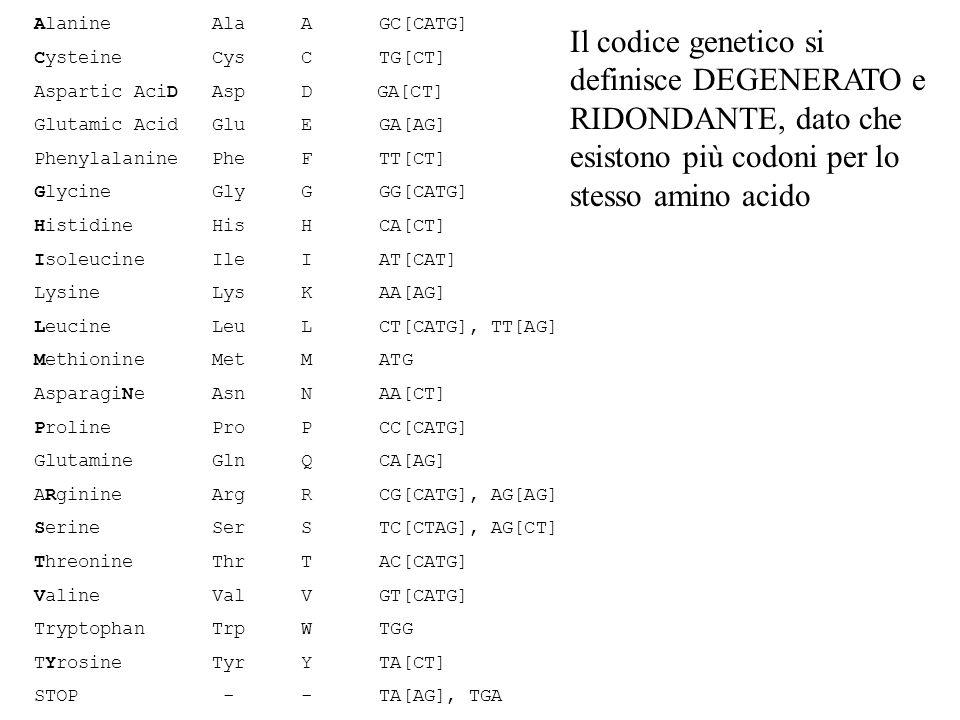 Alanine Ala A GC[CATG] Cysteine Cys C TG[CT] Aspartic AciD Asp D GA[CT]